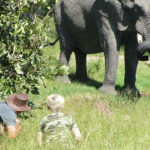 Okavango Expeditions guide with client and elephant